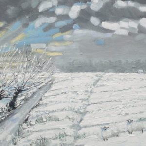 Schapen in de sneeuw in Zeeuws-Vlaanderen olieverf op linnen - 50 x 100 cm