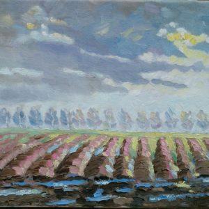 Polders in Zeeuws-Vlaanderen Olieverf op linnen - 24 x 30 cm
