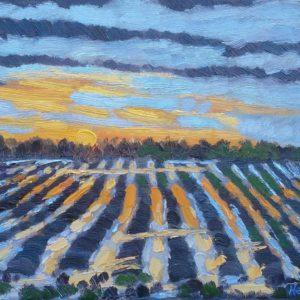 Zeeuws landschap met ondergaande zon Olieverf op linnen - 24 x 30 cm