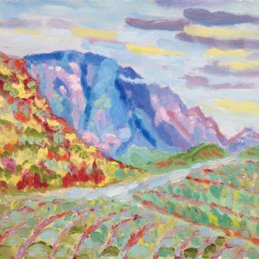 Montagne de Bluye bij Mont Ventoux