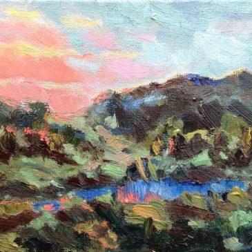 Domburg duinen 1