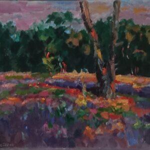 Strijbeekse heide zonsondergang Olieverf op linnen - 24 x 30 cm